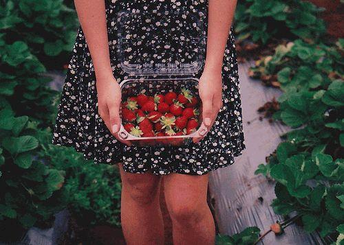 диета,лето 2012,похудение,ягоды
