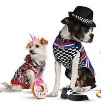 гвен стефани, одежда для собак, гвен стефани одежда для собак, Harajuku Lovers. гвен стефани Harajuku Lovers