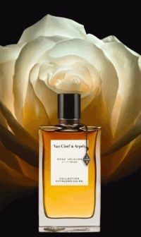 Van Cleef and Arpels,Rose Velours,духи