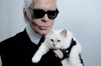 карл лагерфельд,кошка,коллекция,косметика,макияж,2014,фото