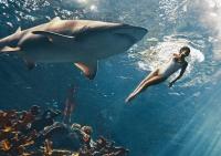 рианна,акулы,фото,фотосессия,новая фотосессия,плавает с акулами,Harpers Bazaar,Рианна акулы