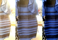 платье,цвет,синий,белый,золотой,черный,звезды,ученые