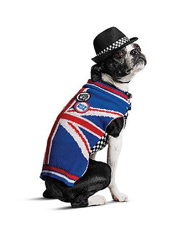 Только от жизни собачьей: Гвен Стефани разработала коллекцию одежды для псов