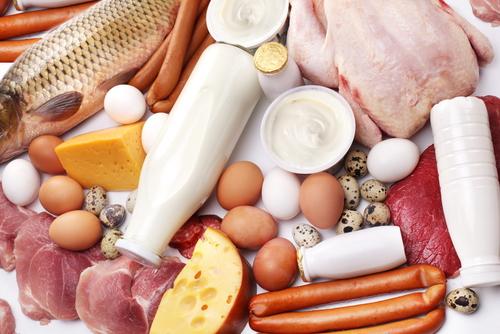 Белковая диета вред