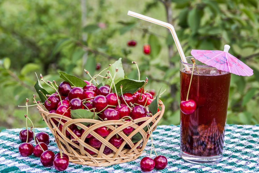 5 полезных рецептов ягодных морсов для жаркого дня