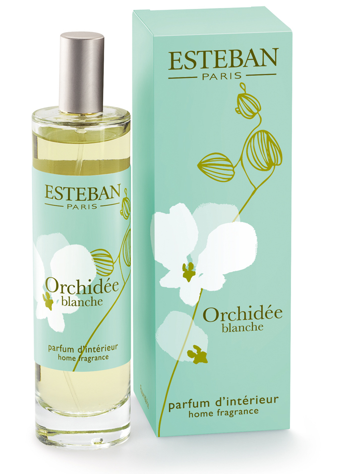Beauty в воздухе: изысканная коллекция ароматов для интерьера от Esteban