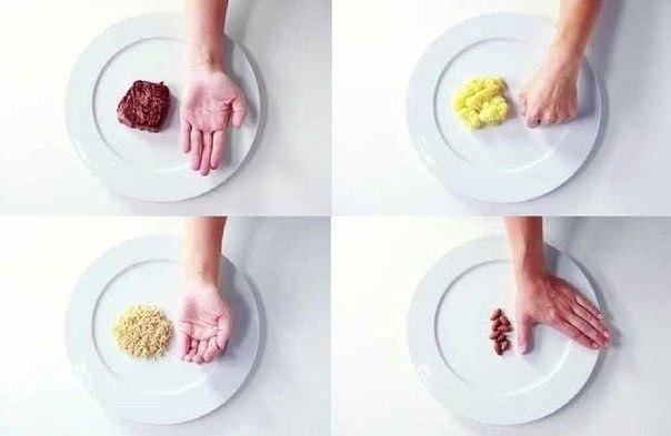 овощное питание для похудения отзывы