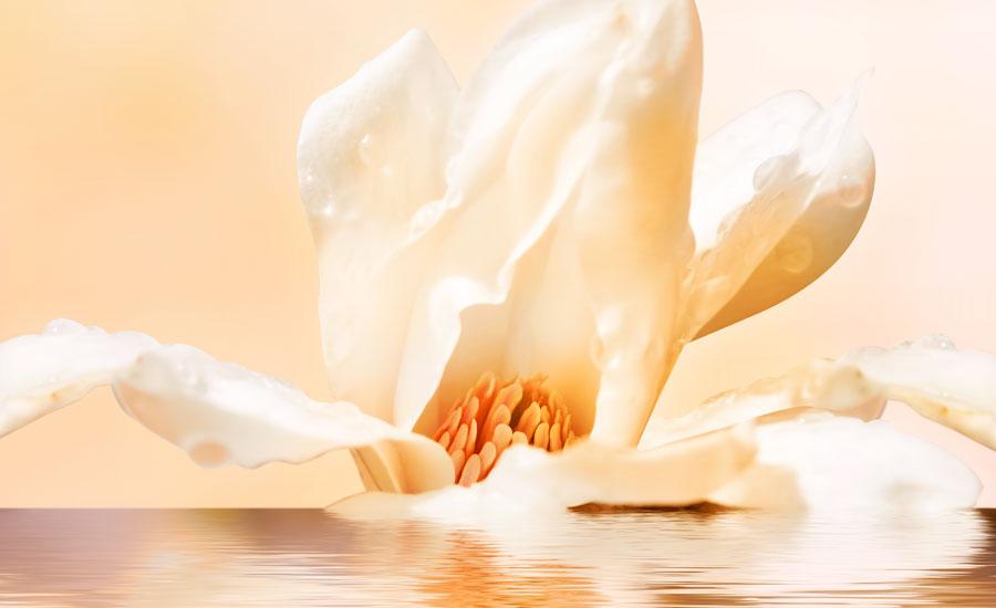Aqua Divina - летний аромат для современной богини от Bvlgari