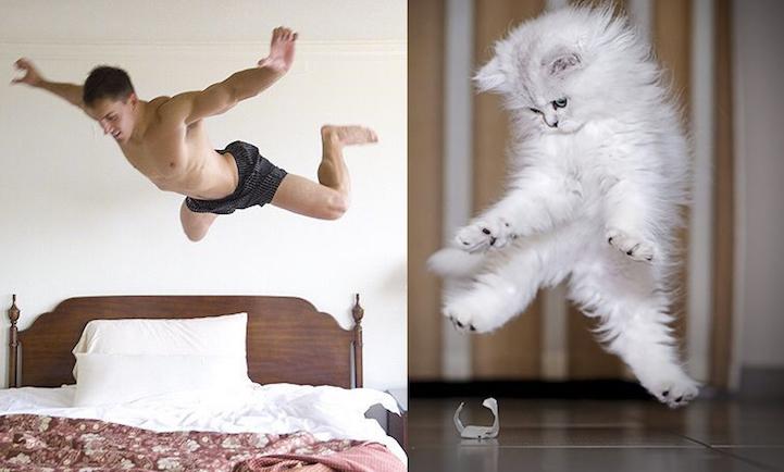 """Лучший подарок на 8 марта: блог """"Мужчины и котики"""" взрывает мимиметры, а книга бьет рекорды продаж"""