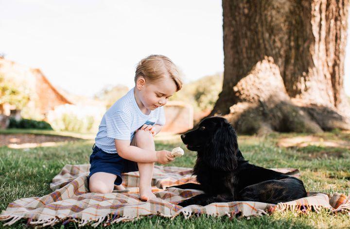 принц Джордж новые фото лето 2016