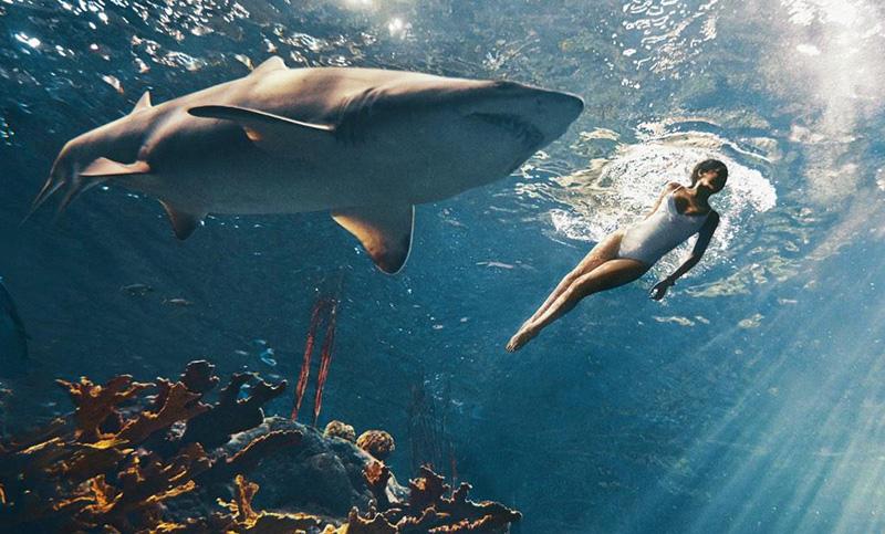 Смело! Рианна окунулась в аквариум с акулами