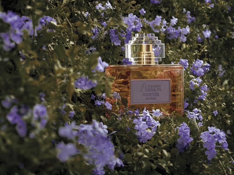 Aura Loewe Floral: секреты композиции
