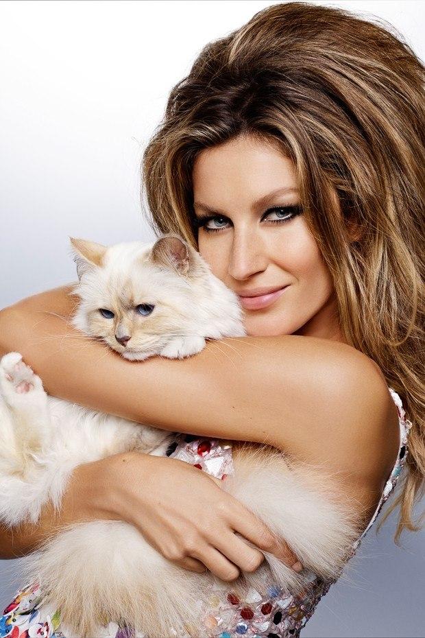 Гламурные дамы: Жизель Бундхен в дуэте с кошкой Карла Лагерфельда