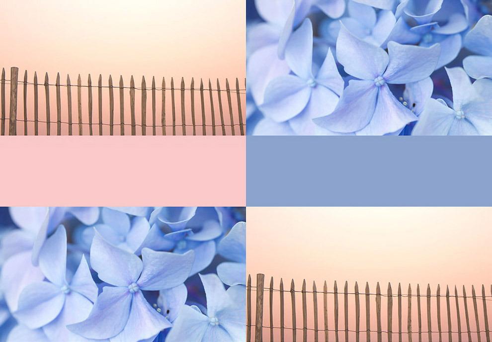 Прощай, Марсала: институт Pantone назвал два главных цвета 2016 года