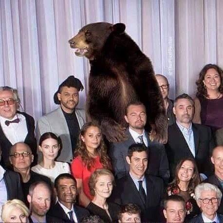 Леонардо ДиКаприо оскар 2016 мемы фото