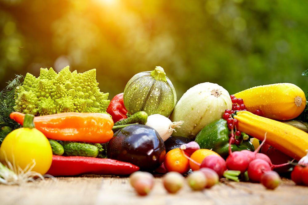 Привет фигура: 3 эффективные диеты, чтобы похудеть после праздников диета лучшая, диета лучшая в мире, диета лучшая эффективная