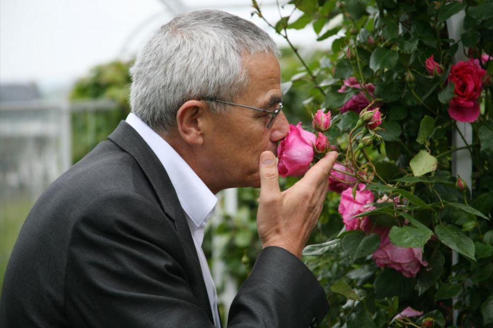 Франсуа Демаши