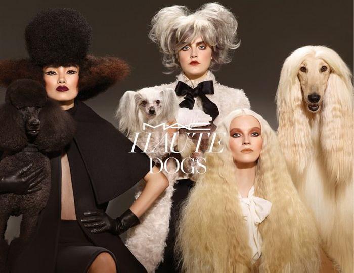 В мире животных: первая коллекция макияжа, посвященная собакам