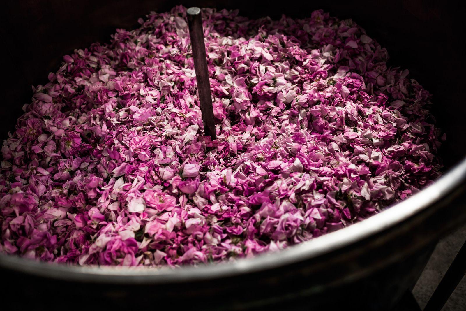 Как создается легенда: парфюмер Dior Франсуа Демаши показал, как создает ароматы