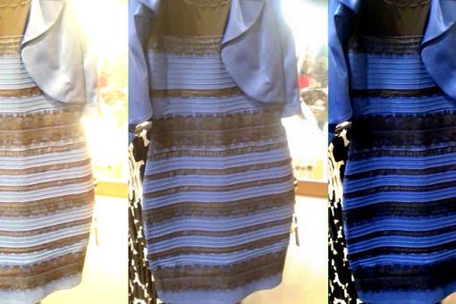 Так какого оно цвета? Реакция звезд на знаменитое платье