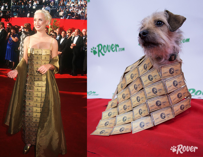"""Щенячьи радости: собак нарядили в костюмы звезд к красной дорожки """"Оскара"""""""