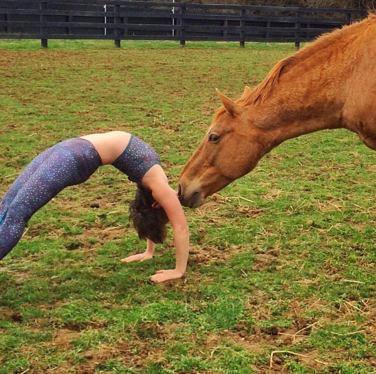 Только не ржать: американка занимается йогой верхом на лошади